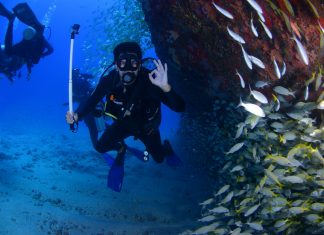Things To Know When Scuba Diving In Kauai